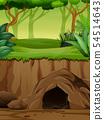 Background scene with underground cave in jungle 54514643