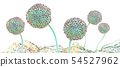 Microscopic image of growing molds or mold fungus 54527962