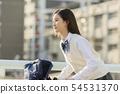 schoolgirl 54531370