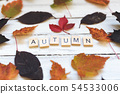 AUTUMN word and leaves on a wooden board 54533006