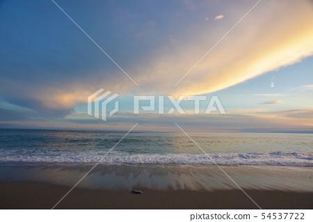 在平原海面上,外觀美麗的綾綾。 54537722