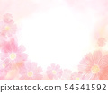 Background _ Cosmos pale pink central white 54541592