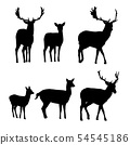 Set of vector silhouettes of deer with a fawn 54545186