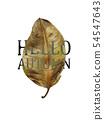 Hello, autumn banner 54547643