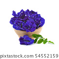 Clitoria ternatea or Aparajita flower isolated  54552159