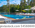 Beautiful summer pool with sunbed and parasols at a country recreation center. Concept of recreation 54560600