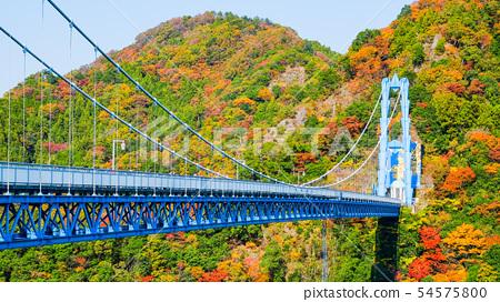 용신 대 현수교 가을 54575800