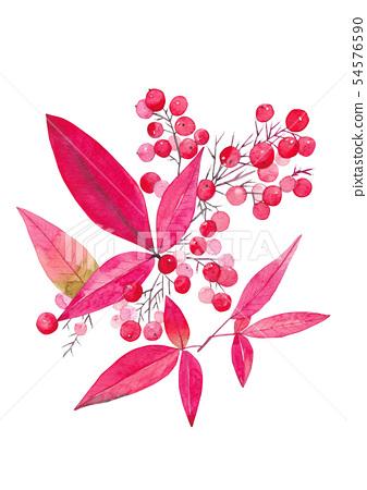 紅色葉子和莓果水彩 54576590