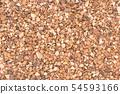 Cola Nuts (Koran Seeds): Kola nuts (Cola nuts) 54593166
