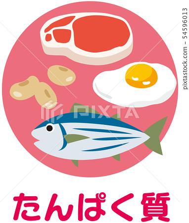 五大營養素蛋白質 54596013