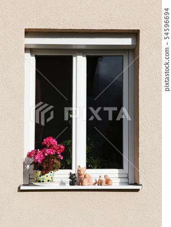Window, Vienna, Austria, Flower pot 54596694