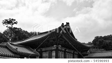 한국의 전통궁전 창덕궁, 흑백사진 54596993