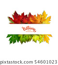 Autumn banner with colorful maple leaves, vector 54601023