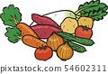 野菜セット 54602311