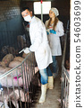 Veterinarians holding syringes and bottles 54603699