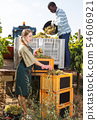 Two vineyard workers inspecting new grapes harvest in boxes outdoor 54606921