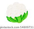 Cauliflower cauliflower 54609731
