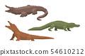 鱷魚 向量 向量圖 54610212