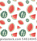 Watermelon handdrawn seamless pattern 54614045