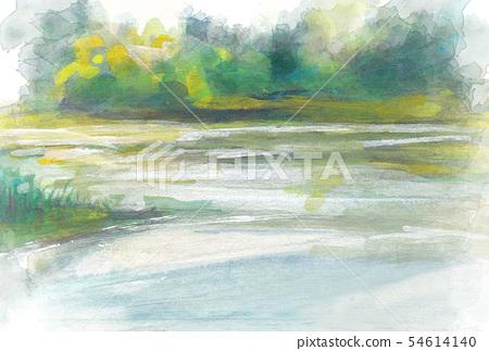 Naeba Mountain [garden of Tengu] wetlands 54614140