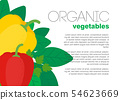 Veg dish in flat style. Vector illustration 54623669