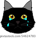 Crying black cat 54624783