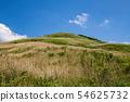ป่าหมอก Shiozuka ที่ราบสูง (เมือง Shikoku Chuo จังหวัด Ehime) 54625732