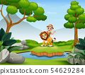 Happy zookeeper boy and lion playing in the nature 54629284