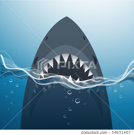 shark in the blue sea background 54631407