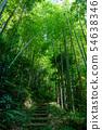 Takebayashi Hashidate Nature Park (Kaga City, Ishikawa Prefecture) early summer 54638346