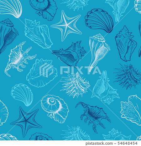 Seashells and starfish vector seamless pattern 54648454