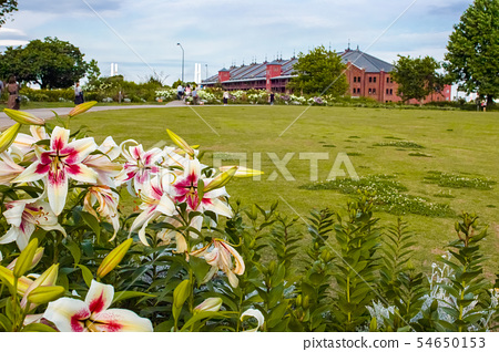 Yokohama New Port Central Square 54650153
