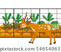 It is fenced to protect agricultural products from deer deer. 54654063