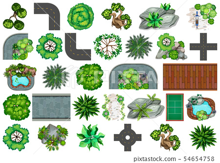 Set of plant for decoration 54654758