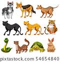 Set of animal character 54654840