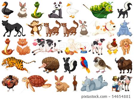 Large set of animals 54654881
