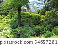 오다 와라 성지 공원의 수국 24 54657281