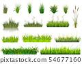 Grass vector grassland or grassplot and green grassy field illustration gardening set floral plants 54677160