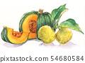 Japanese annual events illustration: December / pumpkin and dumplings 54680584