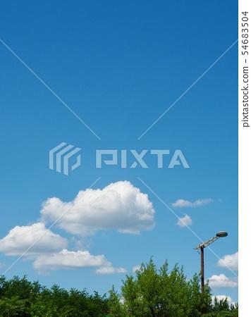 란국 서울시의 나무와 하늘과 구름 54683504