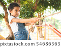 Cute asian child girl is climbing a wooden wall 54686363