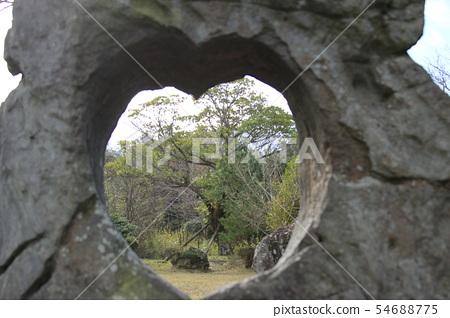 비자림,숲속,산책길,피톤치드, 54688775
