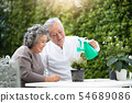 Asian Senior Couple helping to care for plants. 54689086