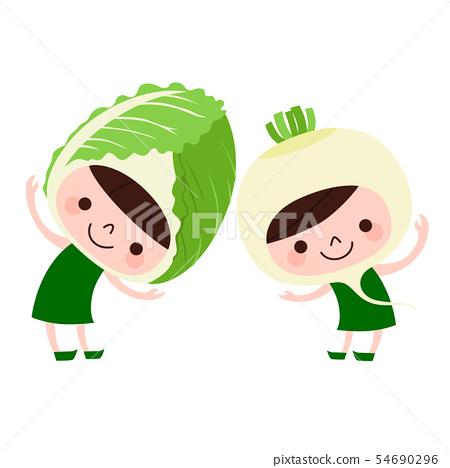 蔬菜的插圖。大白菜和卡布的特徵。 54690296