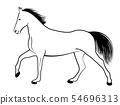 horse line art illustration 54696313