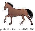 horse, color illustration 54696361