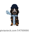 freezing dog with wool scarf and cap 54700666