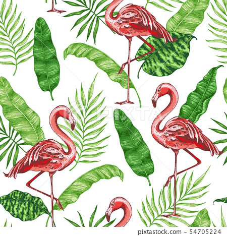 Tropical pattern with pink flamingo. 54705224
