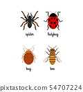 Insects colorful flat icons set 54707224