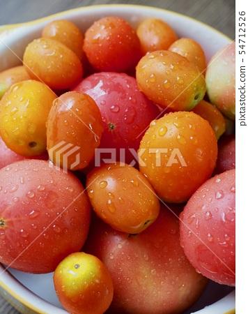 신선한 유기농 토마토와 방울 토마토 54712526